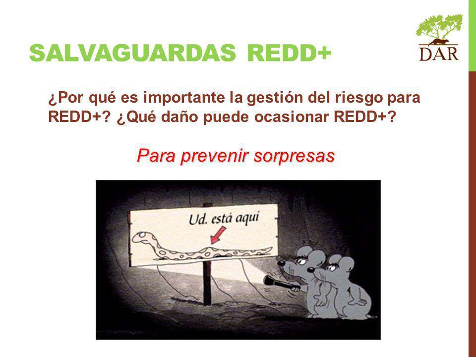 ¿Por qué es importante la gestión del riesgo para REDD+? ¿Qué daño puede ocasionar REDD+? Para prevenir sorpresas SALVAGUARDAS REDD+