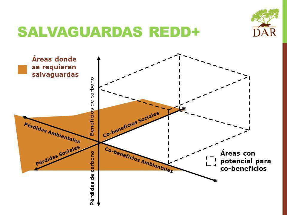 Beneficios de carbono Pérdidas de carbono Co-beneficios Sociales Co-beneficios Ambientales Pérdidas Ambientales Pérdidas Sociales Áreas donde se requieren salvaguardas Áreas con potencial para co-beneficios SALVAGUARDAS REDD+