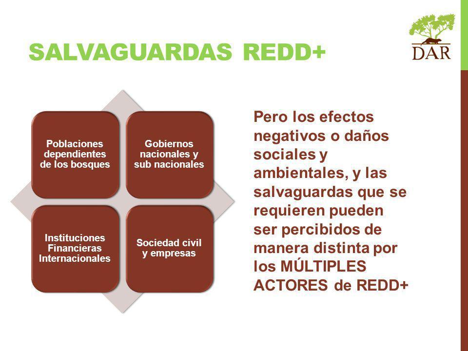 Internacional Poblaciones dependientes de los bosques Gobiernos nacionales y sub nacionales Instituciones Financieras Internacionales Sociedad civil y