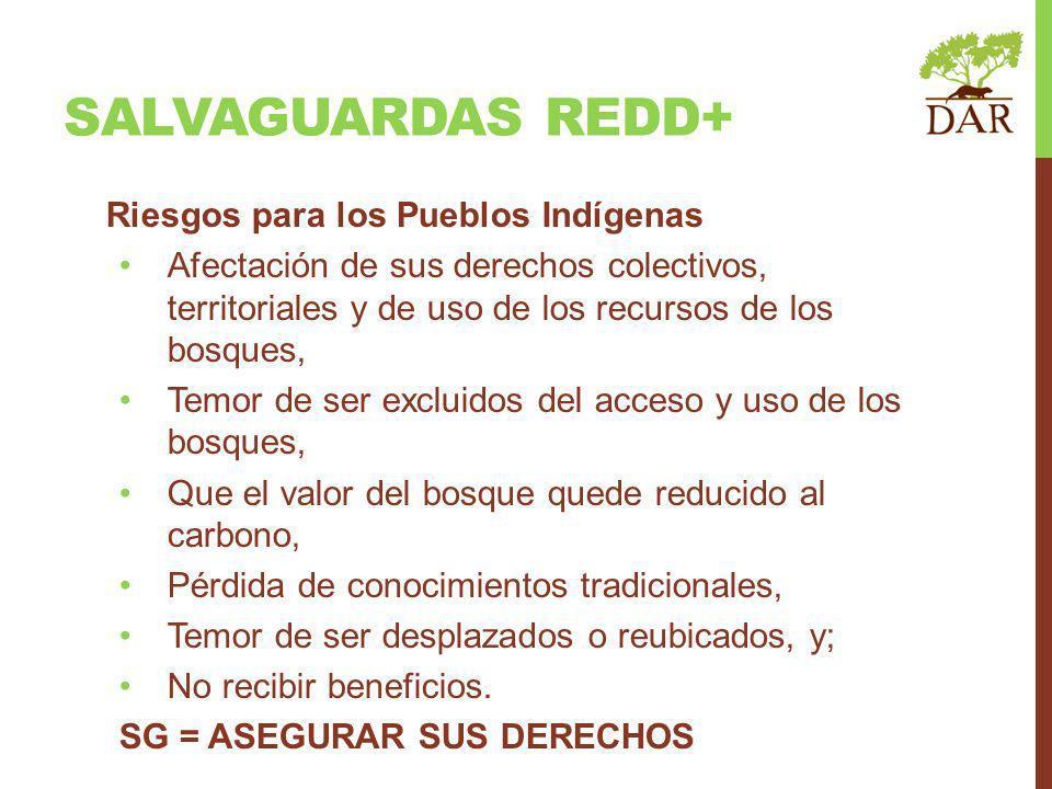 SALVAGUARDAS REDD+ Riesgos para los Pueblos Indígenas Afectación de sus derechos colectivos, territoriales y de uso de los recursos de los bosques, Temor de ser excluidos del acceso y uso de los bosques, Que el valor del bosque quede reducido al carbono, Pérdida de conocimientos tradicionales, Temor de ser desplazados o reubicados, y; No recibir beneficios.