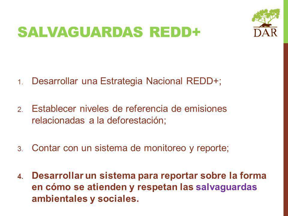 1. Desarrollar una Estrategia Nacional REDD+; 2. Establecer niveles de referencia de emisiones relacionadas a la deforestación; 3. Contar con un siste