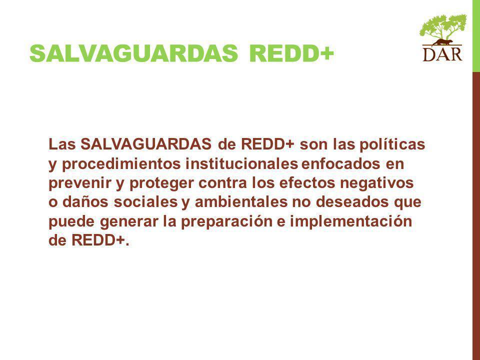 Las SALVAGUARDAS de REDD+ son las políticas y procedimientos institucionales enfocados en prevenir y proteger contra los efectos negativos o daños sociales y ambientales no deseados que puede generar la preparación e implementación de REDD+.