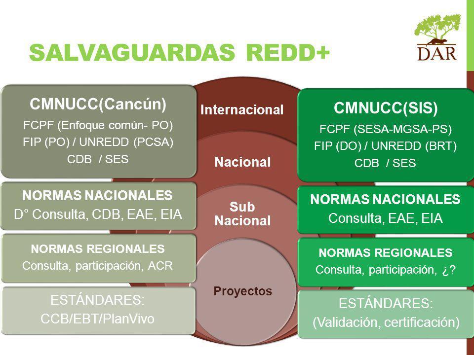 SALVAGUARDAS REDD+ Internacional CMNUCC(Cancún) FCPF (Enfoque común- PO) FIP (PO) / UNREDD (PCSA) CDB / SES NORMAS NACIONALES D° Consulta, CDB, EAE, EIA NORMAS REGIONALES Consulta, participación, ACR ESTÁNDARES: CCB/EBT/PlanVivo CMNUCC(SIS) FCPF (SESA-MGSA-PS) FIP (DO) / UNREDD (BRT) CDB / SES NORMAS NACIONALES Consulta, EAE, EIA NORMAS REGIONALES Consulta, participación, ¿.