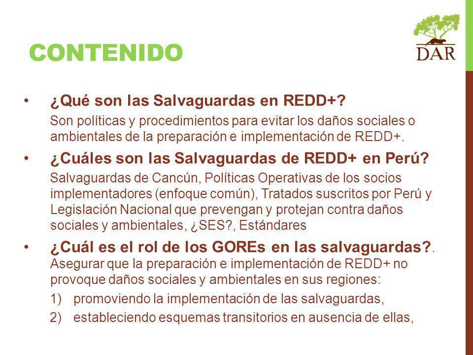 CONTENIDO ¿Qué son las Salvaguardas en REDD+? Son políticas y procedimientos para evitar los daños sociales o ambientales de la preparación e implemen