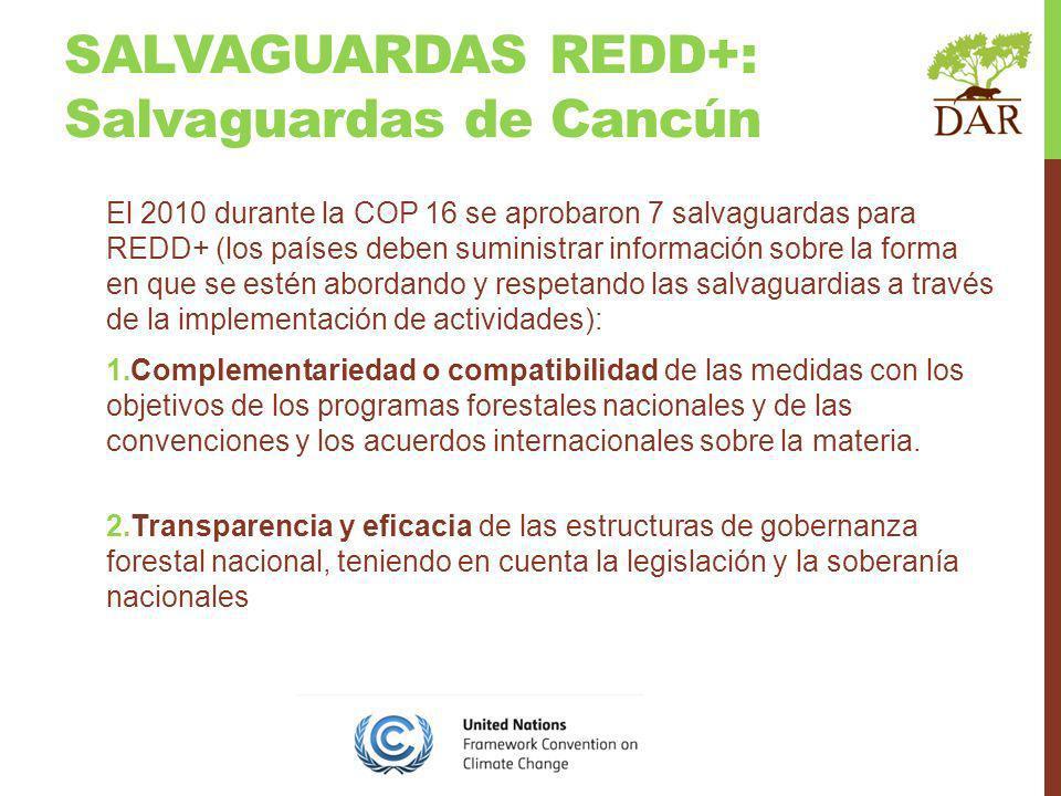 El 2010 durante la COP 16 se aprobaron 7 salvaguardas para REDD+ (los países deben suministrar información sobre la forma en que se estén abordando y respetando las salvaguardias a través de la implementación de actividades): 1.Complementariedad o compatibilidad de las medidas con los objetivos de los programas forestales nacionales y de las convenciones y los acuerdos internacionales sobre la materia.