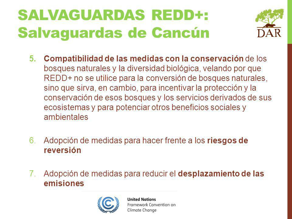 SALVAGUARDAS REDD+: Salvaguardas de Cancún 5.Compatibilidad de las medidas con la conservación de los bosques naturales y la diversidad biológica, velando por que REDD+ no se utilice para la conversión de bosques naturales, sino que sirva, en cambio, para incentivar la protección y la conservación de esos bosques y los servicios derivados de sus ecosistemas y para potenciar otros beneficios sociales y ambientales 6.Adopción de medidas para hacer frente a los riesgos de reversión 7.Adopción de medidas para reducir el desplazamiento de las emisiones