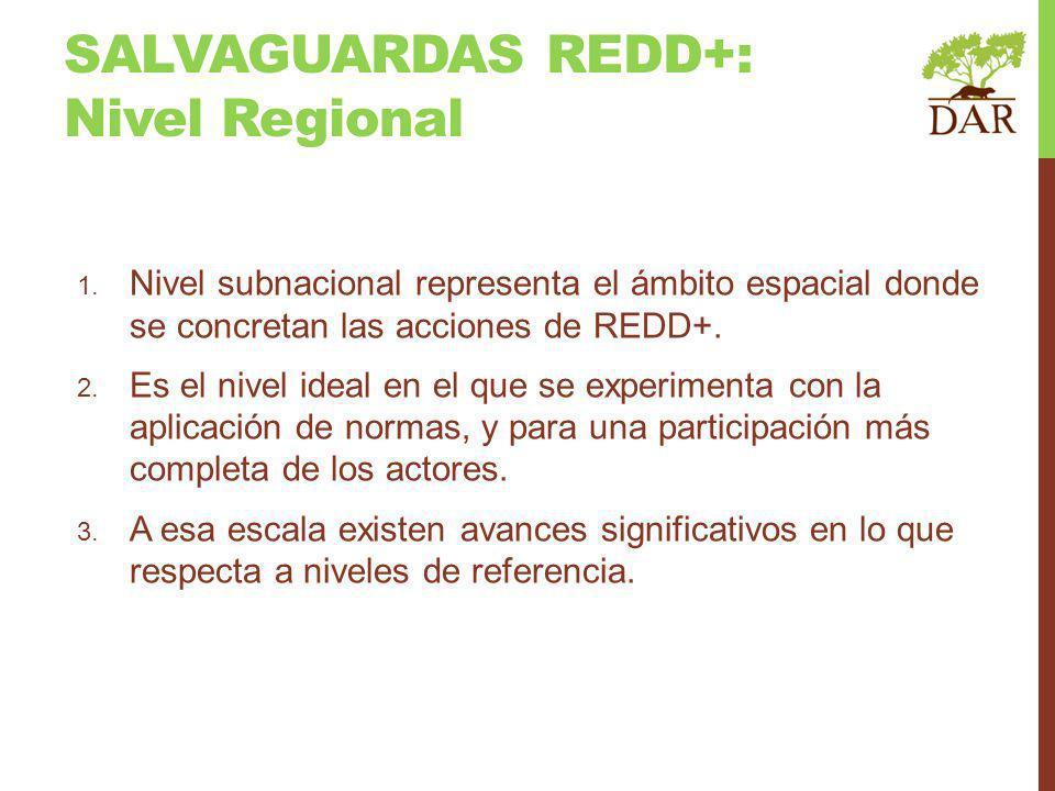 1. Nivel subnacional representa el ámbito espacial donde se concretan las acciones de REDD+. 2. Es el nivel ideal en el que se experimenta con la apli