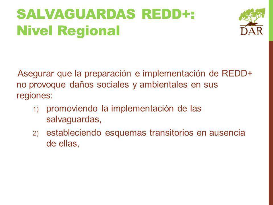 Asegurar que la preparación e implementación de REDD+ no provoque daños sociales y ambientales en sus regiones: 1) promoviendo la implementación de las salvaguardas, 2) estableciendo esquemas transitorios en ausencia de ellas, SALVAGUARDAS REDD+: Nivel Regional