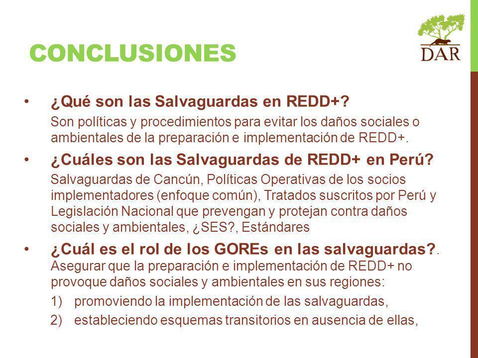CONCLUSIONES ¿Qué son las Salvaguardas en REDD+? Son políticas y procedimientos para evitar los daños sociales o ambientales de la preparación e imple