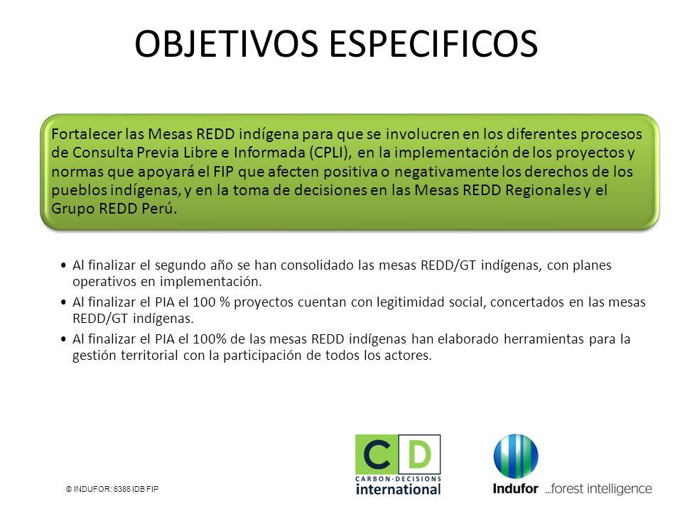 © INDUFOR: 6386 IDB FIP Fortalecer las Mesas REDD indígena para que se involucren en los diferentes procesos de Consulta Previa Libre e Informada (CPL