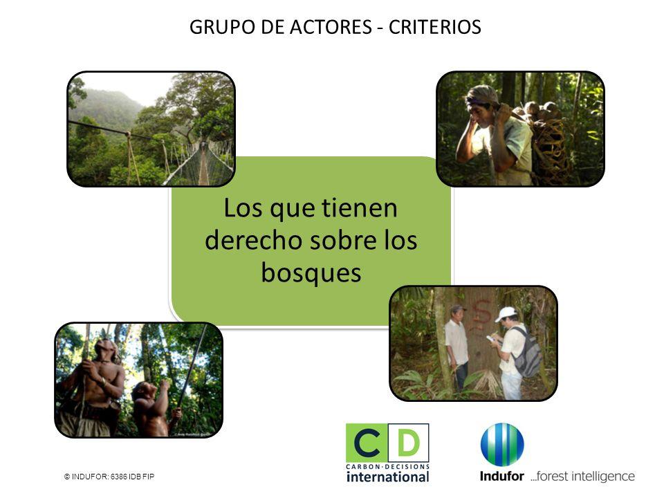 GRUPO DE ACTORES - CRITERIOS © INDUFOR: 6386 IDB FIP