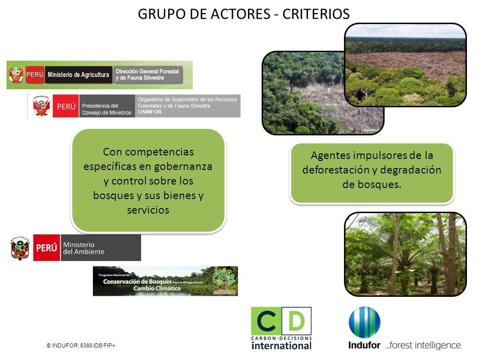 © INDUFOR: 6386 IDB FIP< Con competencias específicas en gobernanza y control sobre los bosques y sus bienes y servicios Agentes impulsores de la defo