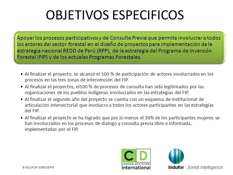 OBJETIVOS ESPECIFICOS © INDUFOR: 6386 IDB FIP Apoyar los procesos participativos y de Consulta Previa que permita involucrar a todos los actores del s