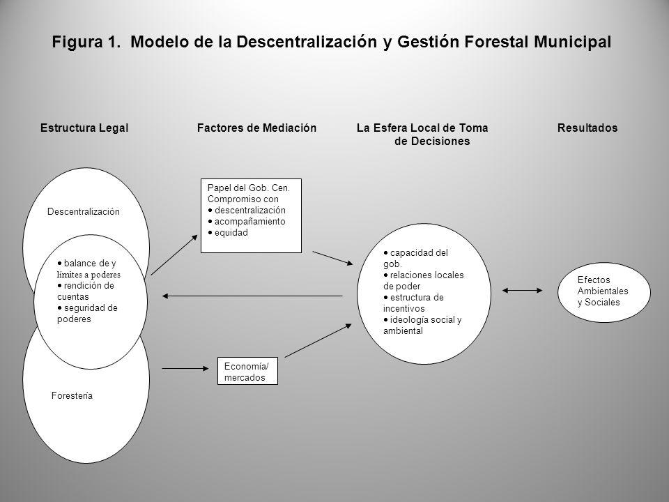 Descentralización balance de y límites a poderes rendición de cuentas seguridad de poderes Papel del Gob.
