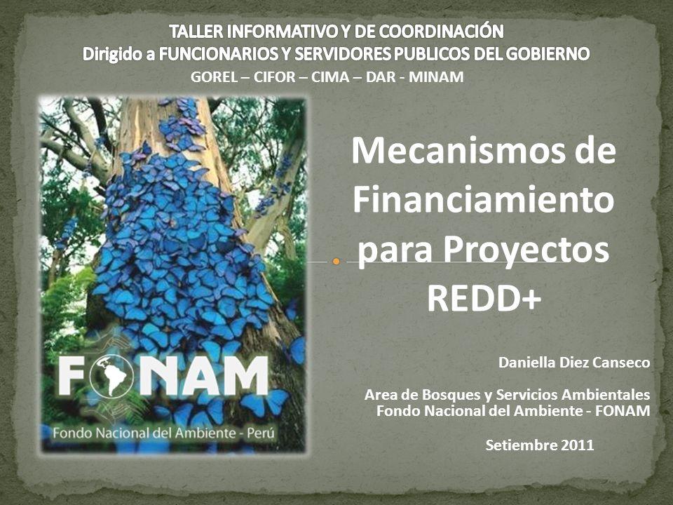 Daniella Diez Canseco Area de Bosques y Servicios Ambientales Fondo Nacional del Ambiente - FONAM Mecanismos de Financiamiento para Proyectos REDD+ Se