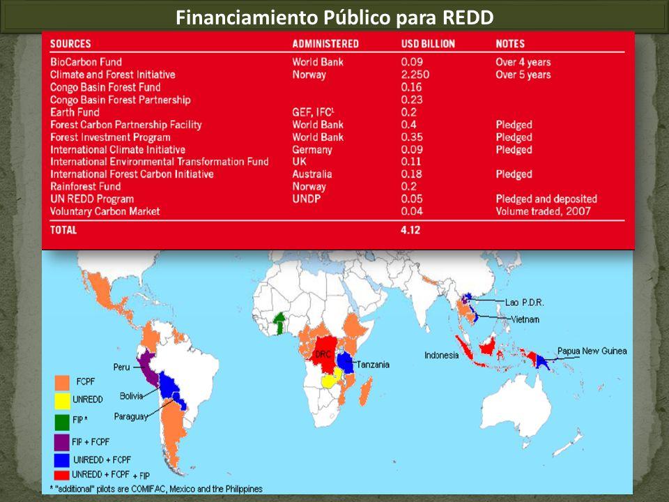 Financiamiento Público para REDD