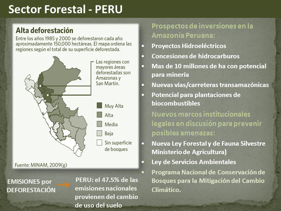 Prospectos de inversiones en la Amazonía Peruana: Proyectos Hidroeléctricos Concesiones de hidrocarburos Mas de 10 millones de ha con potencial para minería Nuevas vías/carreteras transamazónicas Potencial para plantaciones de biocombustibles Nuevos marcos institucionales legales en discusión para prevenir posibles amenazas: Nueva Ley Forestal y de Fauna Silvestre Ministerio de Agricultura) Ley de Servicios Ambientales Programa Nacional de Conservación de Bosques para la Mitigación del Cambio Climático.