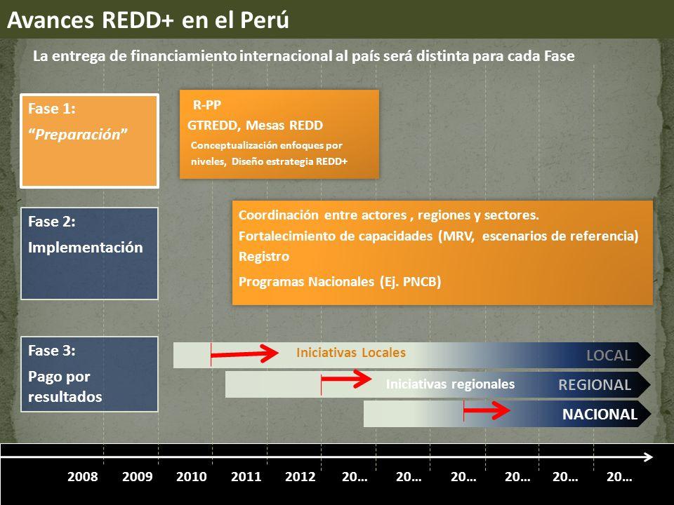 201020112012200920… 2008 LOCAL REGIONAL NACIONAL Fase 2: Implementación Fase 3: Pago por resultados Fase 1: Preparación Iniciativas Locales Iniciativas regionales R-PP GTREDD, Mesas REDD Coordinación entre actores, regiones y sectores.