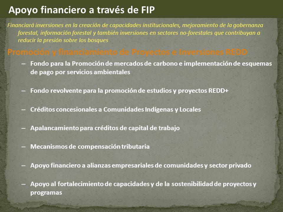 Financiará inversiones en la creación de capacidades institucionales, mejoramiento de la gobernanza forestal, información forestal y también inversiones en sectores no-forestales que contribuyan a reducir la presión sobre los bosques Promoción y financiamiento de Proyectos e Inversiones REDD – Fondo para la Promoción de mercados de carbono e implementación de esquemas de pago por servicios ambientales – Fondo revolvente para la promoción de estudios y proyectos REDD+ – Créditos concesionales a Comunidades Indígenas y Locales – Apalancamiento para créditos de capital de trabajo – Mecanismos de compensación tributaria – Apoyo financiero a alianzas empresariales de comunidades y sector privado – Apoyo al fortalecimiento de capacidades y de la sostenibilidad de proyectos y programas Apoyo financiero a través de FIP