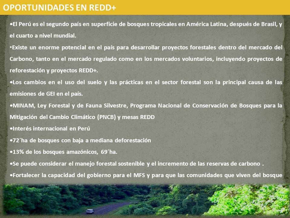 El Perú es el segundo país en superficie de bosques tropicales en América Latina, después de Brasil, y el cuarto a nivel mundial. Existe un enorme pot