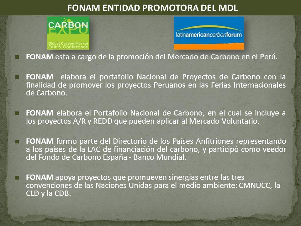 FONAM esta a cargo de la promoción del Mercado de Carbono en el Perú.