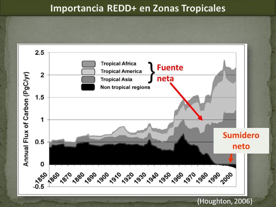 (Houghton, 2006) Sumidero neto Fuente neta } Importancia REDD+ en Zonas Tropicales }