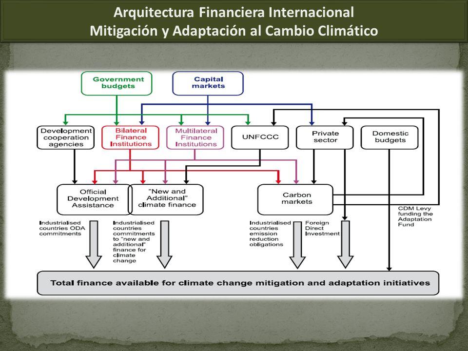 Arquitectura Financiera Internacional Mitigación y Adaptación al Cambio Climático Arquitectura Financiera Internacional Mitigación y Adaptación al Cambio Climático