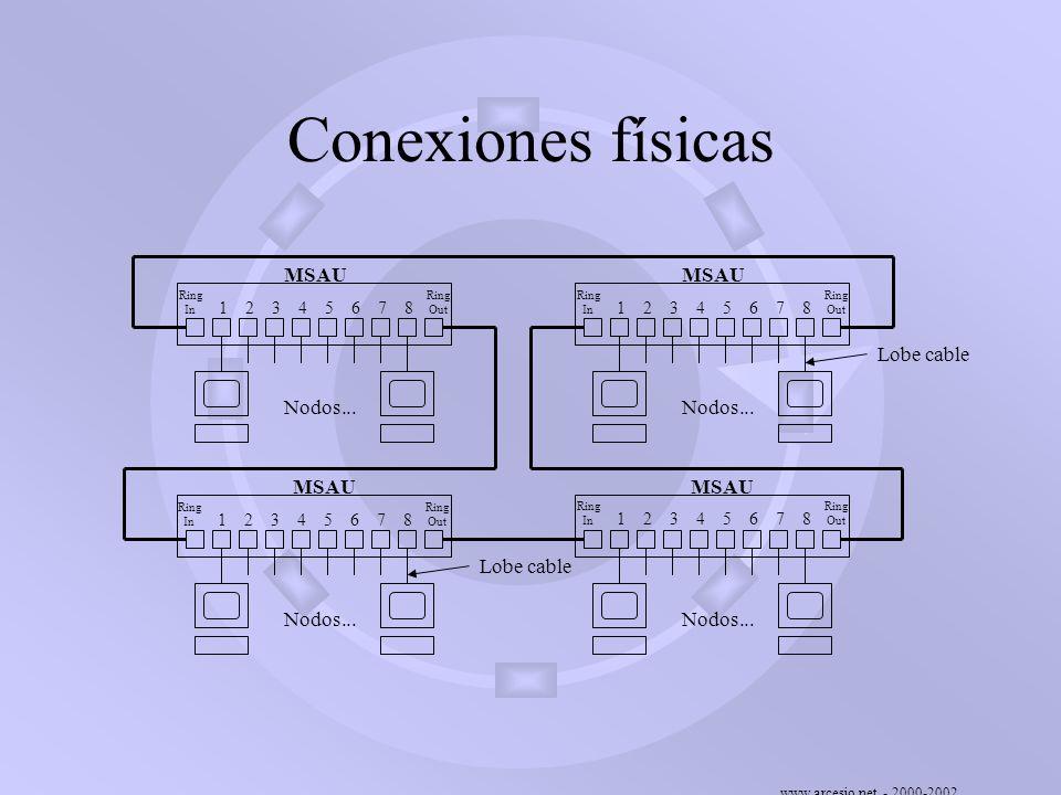 www.arcesio.net - 2000-2002 Conexiones físicas 23456781 Ring In Ring Out 23456781 Ring In Ring Out 23456781 Ring In Ring Out 23456781 Ring In Ring Out