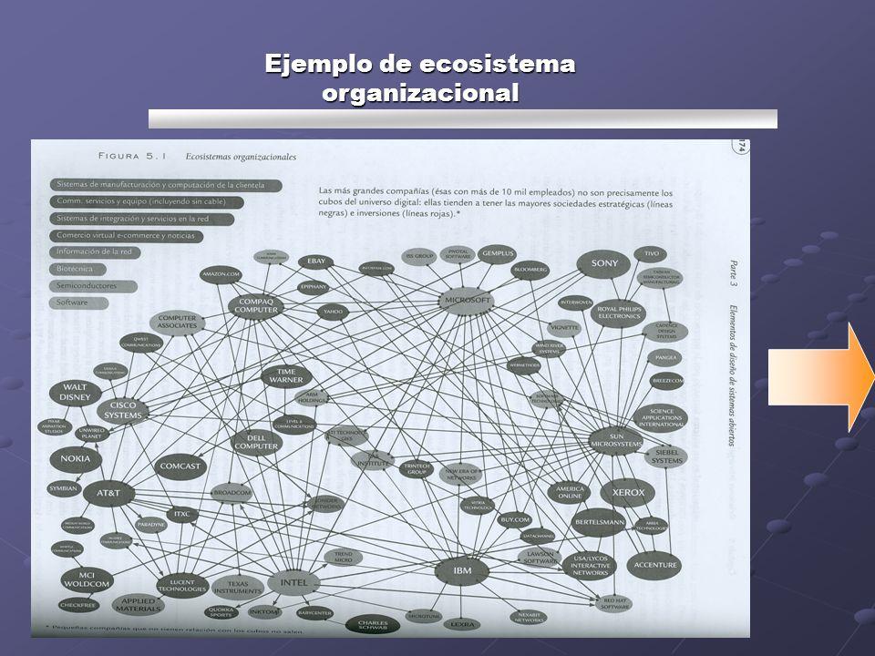Ejemplo de ecosistema organizacional