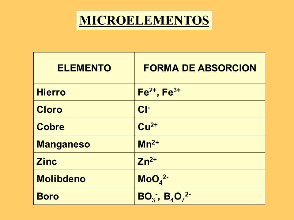 ELEMENTOFORMA DE ABSORCION HierroFe 2+, Fe 3+ CloroCl - CobreCu 2+ ManganesoMn 2+ ZincZn 2+ MolibdenoMoO 4 2- BoroBO 3 -, B 4 O 7 2- MICROELEMENTOS