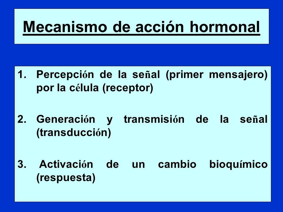 1.Percepci ó n de la se ñ al (primer mensajero) por la c é lula (receptor) 2.Generaci ó n y transmisi ó n de la se ñ al (transducci ó n) 3. Activaci ó