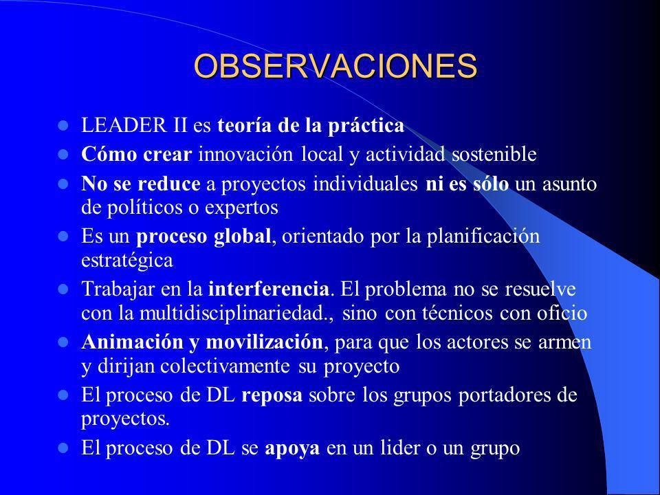 LEADER Y DESARROLLO LOCAL La innovación se define a partir de la reforma de lo local LEADER va por delante del MCA de la región y no es un complemento