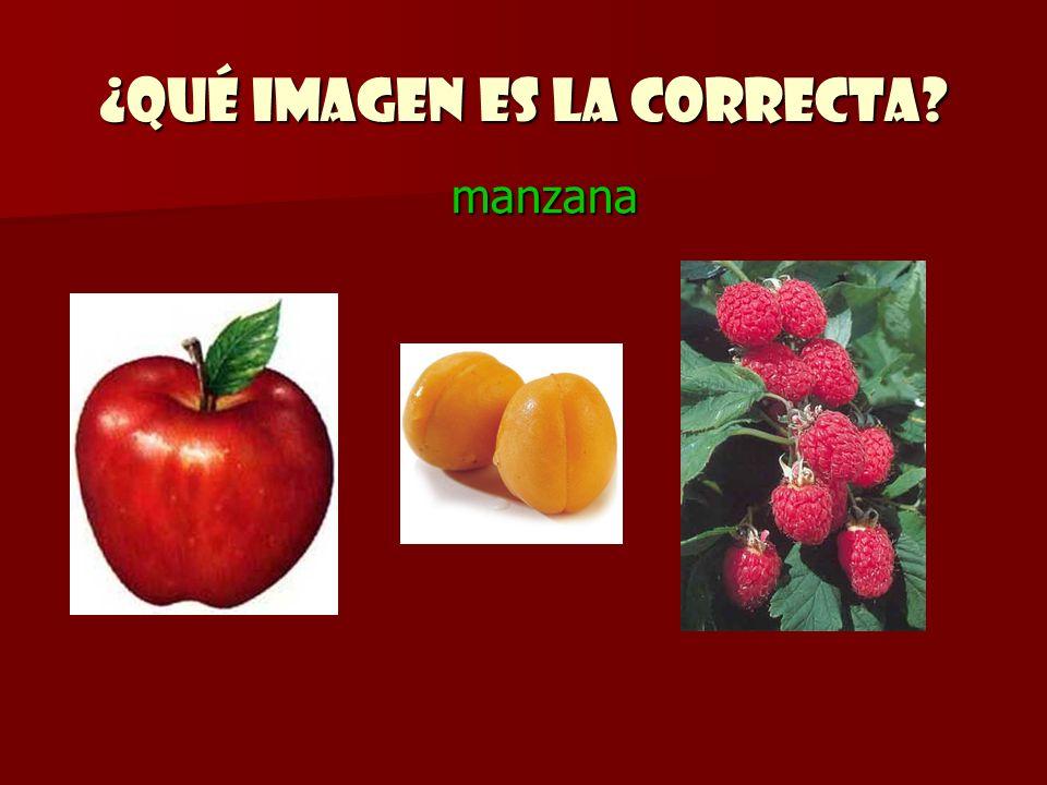 ¿Qué imagen es la correcta? manzana