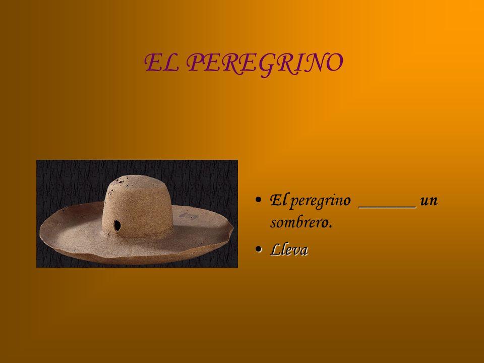 EL PEREGRINO ______El peregrino ______ un sombrero. LlevaLleva