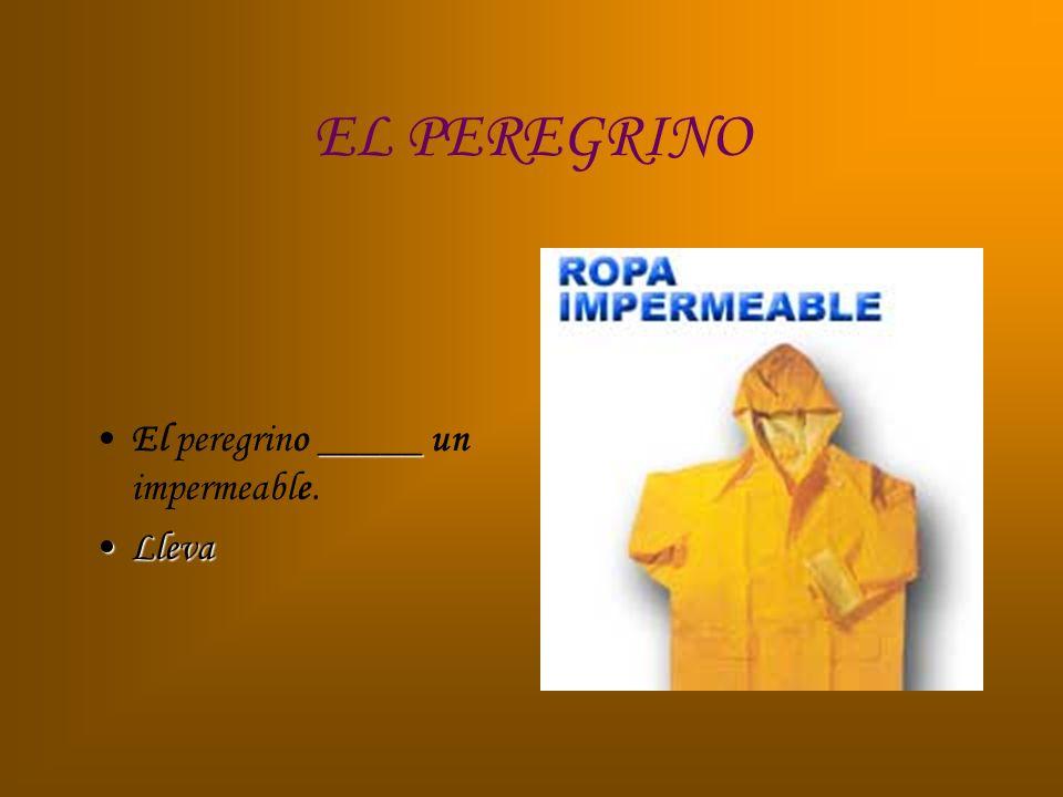 EL PEREGRINO _____El peregrino _____ un impermeable. LlevaLleva