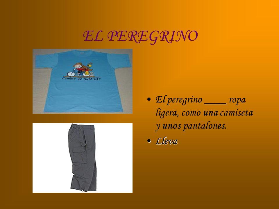 EL PEREGRINO ____El peregrino ____ ropa ligera, como una camiseta y unos pantalones. LlevaLleva