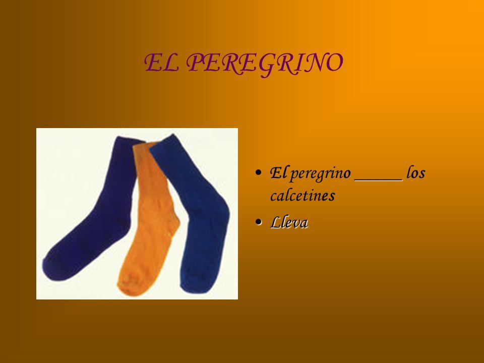 EL PEREGRINO _____El peregrino _____ los calcetines LlevaLleva