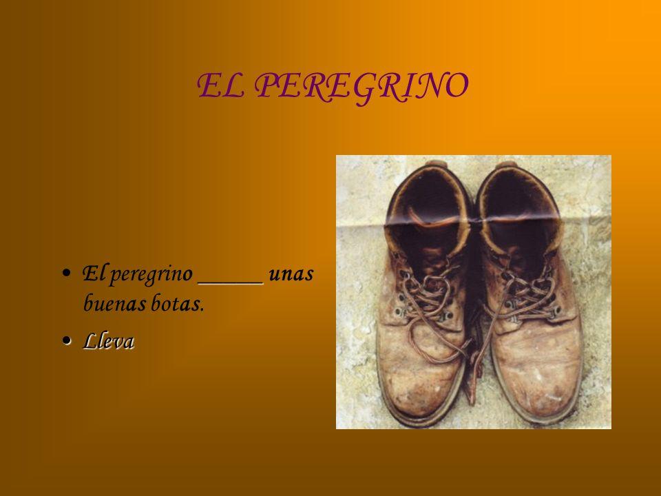 EL PEREGRINO _____El peregrino _____ unas buenas botas. LlevaLleva