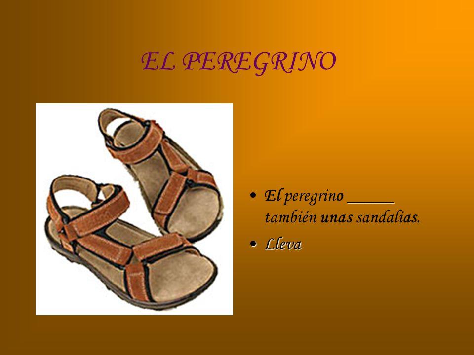 EL PEREGRINO _____El peregrino _____ también unas sandalias. LlevaLleva