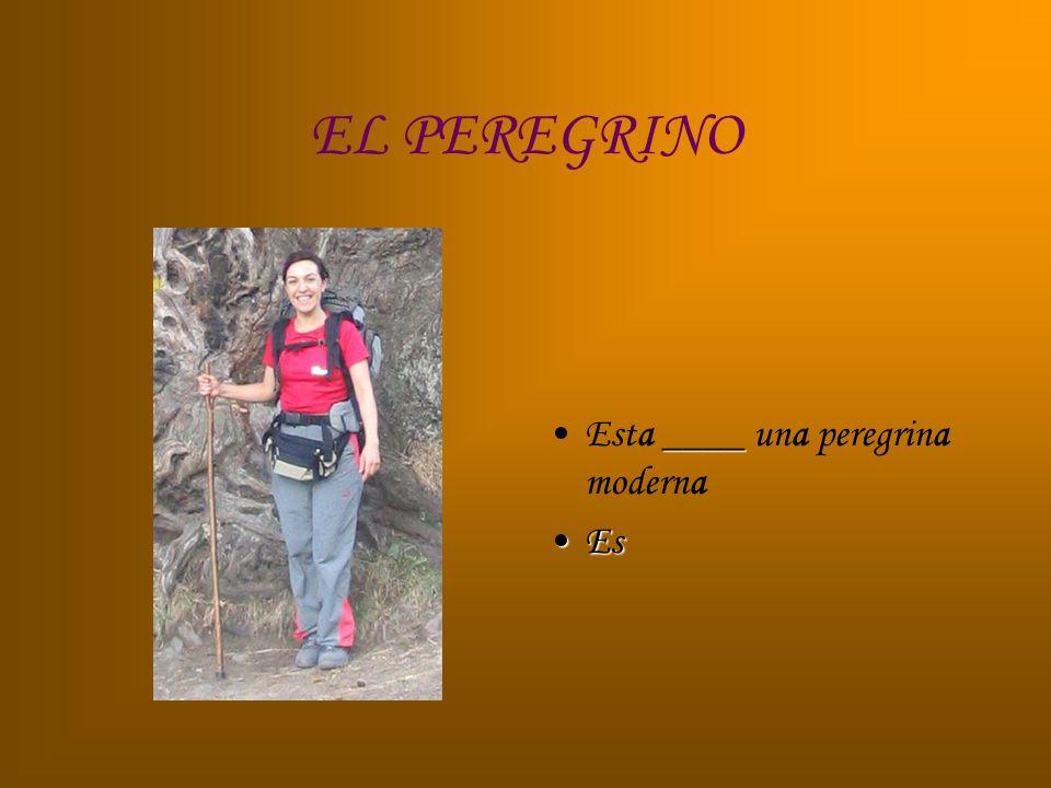 EL PEREGRINO ____Esta ____ una peregrina moderna EsEs