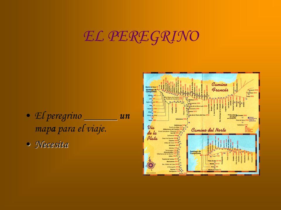 EL PEREGRINO ______El peregrino ______ un mapa para el viaje. NecesitaNecesita