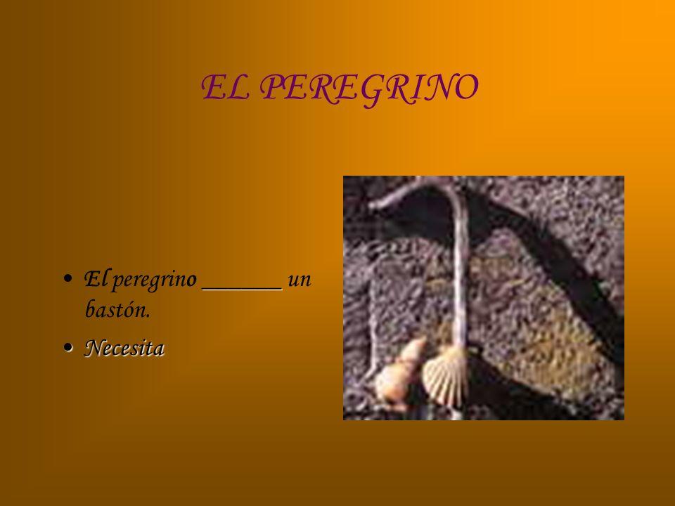 EL PEREGRINO ___El Camino de Santiago ___ seguro para los peregrinos. EsEs