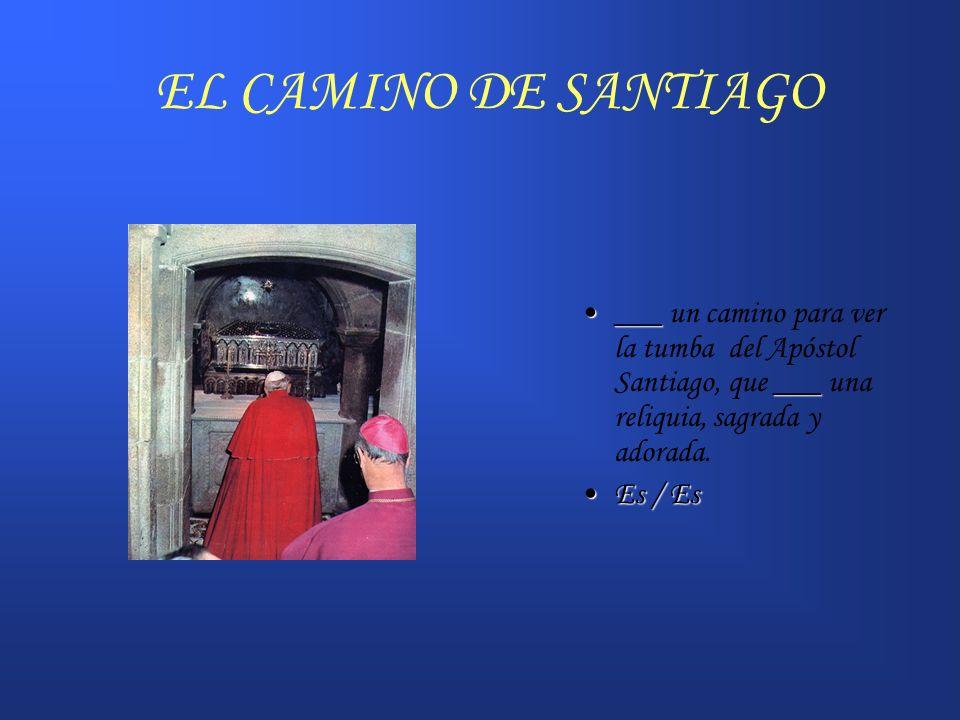EL CAMINO DE SANTIAGO ___ ______ un camino para ver la tumba del Apóstol Santiago, que ___ una reliquia, sagrada y adorada. Es / EsEs / Es