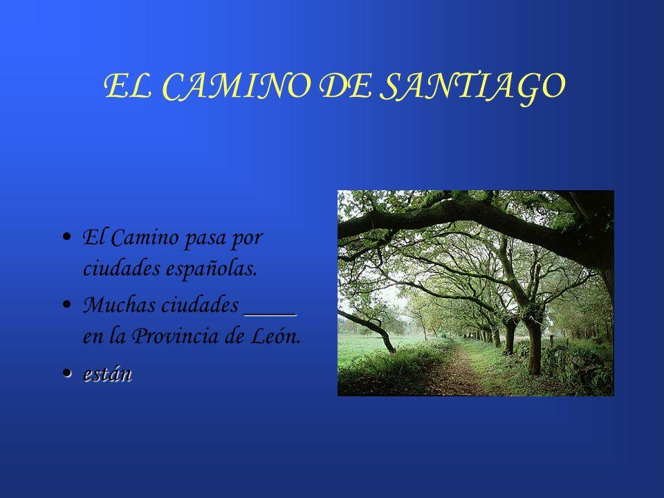 EL CAMINO DE SANTIAGO El Camino pasa por ciudades españolas. ____Muchas ciudades ____ en la Provincia de León. estánestán
