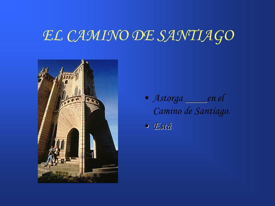EL CAMINO DE SANTIAGO _____León _____ en el Camino también. EstáEstá
