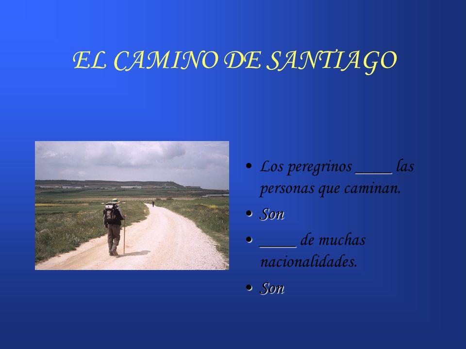 EL CAMINO DE SANTIAGO ____Los peregrinos ____ las personas que caminan. SonSon ________ de muchas nacionalidades. SonSon