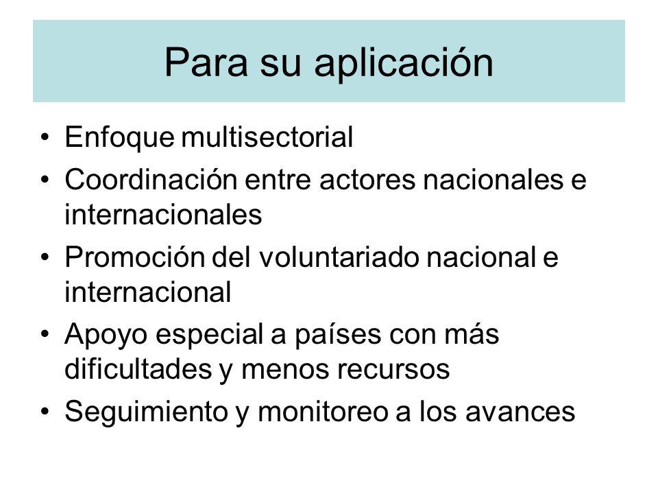 Para su aplicación Enfoque multisectorial Coordinación entre actores nacionales e internacionales Promoción del voluntariado nacional e internacional