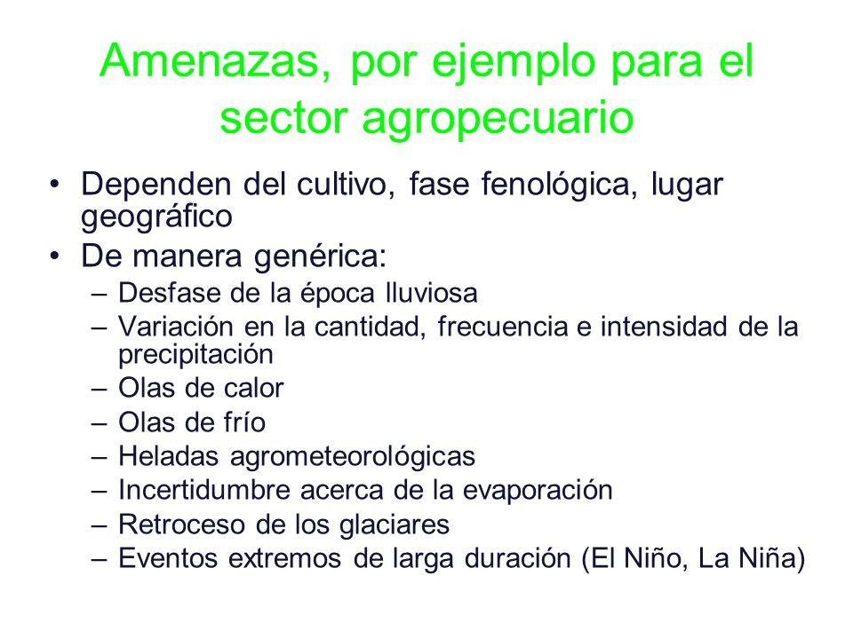 Amenazas, por ejemplo para el sector agropecuario Dependen del cultivo, fase fenológica, lugar geográfico De manera genérica: –Desfase de la época llu