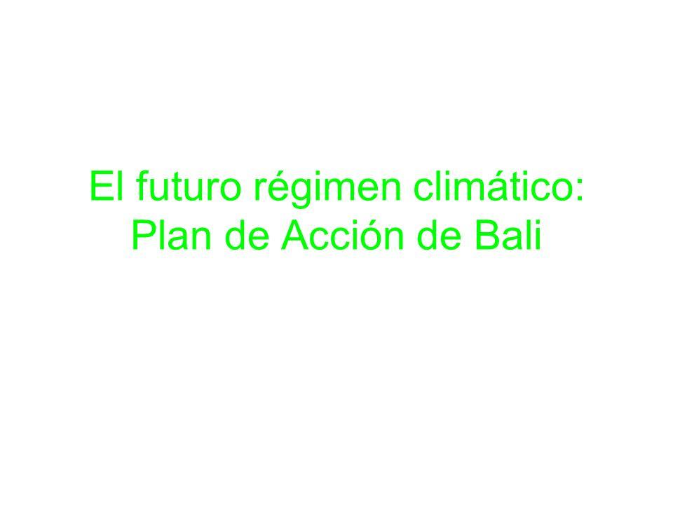 El futuro régimen climático: Plan de Acción de Bali
