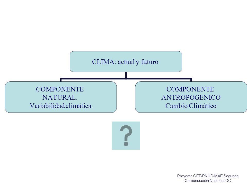 CLIMA: actual y futuro COMPONENTE NATURAL. Variabilidad climática COMPONENTE ANTROPOGENICO Cambio Climático Proyecto GEF/PNUD/MAE Segunda Comunicación